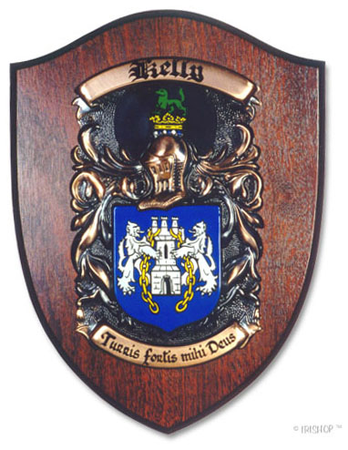Personalized Coat of Arms Plaque - Large