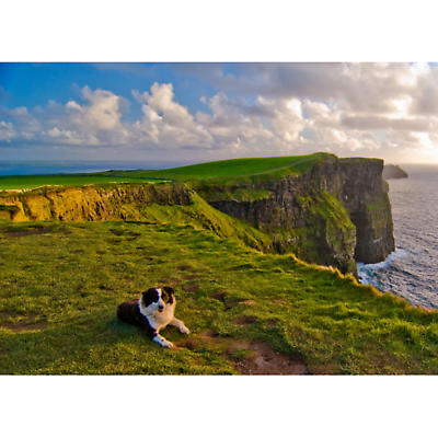 At the Cliffs of Moher Photographic Print