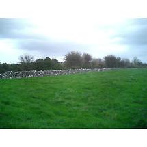 Own a Piece of Ireland