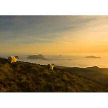 Dingle Peninsula at sunset Photographic Print