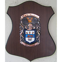Personalized Irish Coat of Arms Cadet Shield Plaque