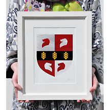 Irish Coat of Arms - Framed Single Crest